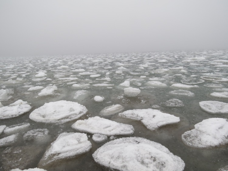 Foggy and icy Lake Ontario at Humber Bay Park East in Toronto, ON