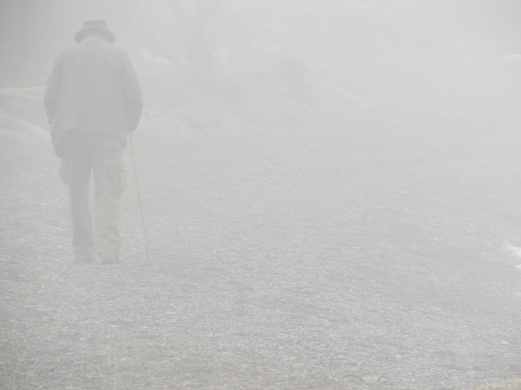Walker in the fog at Humber Bay Park East in Toronto, ON