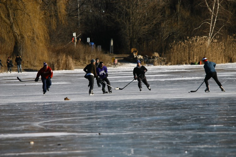 A game of hockey on Grenadier Pond (High Park)