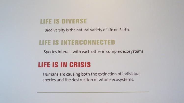 Biodiversty