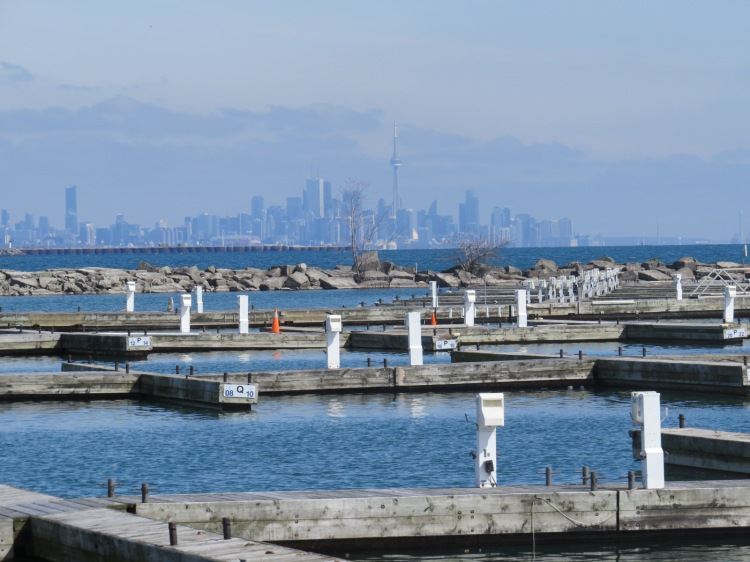 Beauty of a view of the City of Toronto skyline