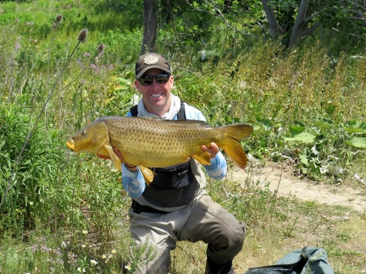 20.5 lb. carp