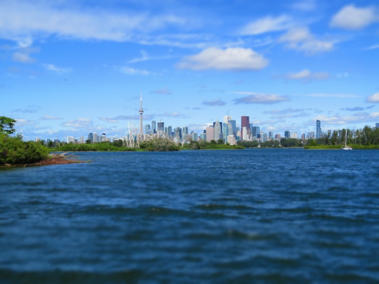 Image of Toronto Skyline taken at Tommy Thompson Park using minature feature of camera
