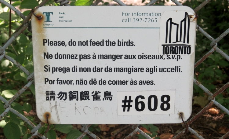 Multilingual Signage at duck ponds